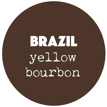 Coffee Shots Yellow Bourbon (Brazilië)