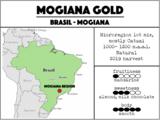Brasil Mogiana Gold - Brasil. Filter, espresso, full-automatic_