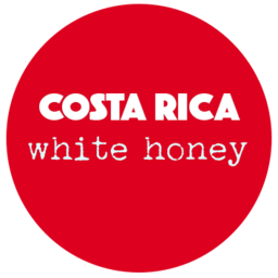 Coffee Shots Costa Rica - White Honey