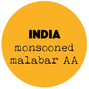 Coffee Shots Monsooned Malabar AA (India)