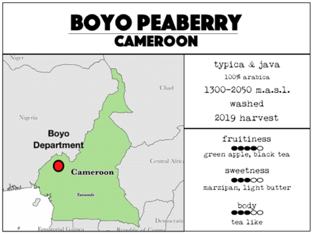 Boyo Peaberry - Cameroon. Light-medium roast