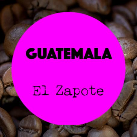 Coffee Shots Guatemala - El Zapote / espresso