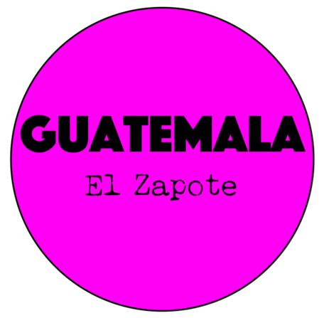 Guatemala El Zapote - Medium-Light Roast - Espresso